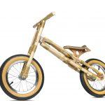foto bici coligue
